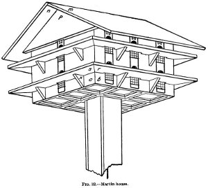 Illustration of a bird house