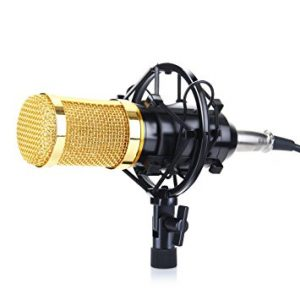 Floureon BM 800 Condenser Recording Microphone