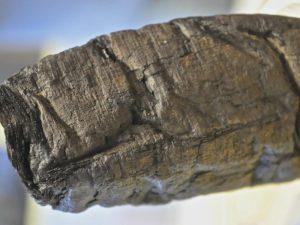 Closeup of Herculaneum scroll.