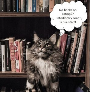 Grey and White Long Coated Cat in Middle of Book Shelf with a thought bubble that states,