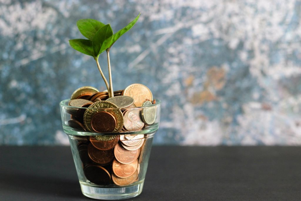 Green plant in a clear glass vase filled with coins