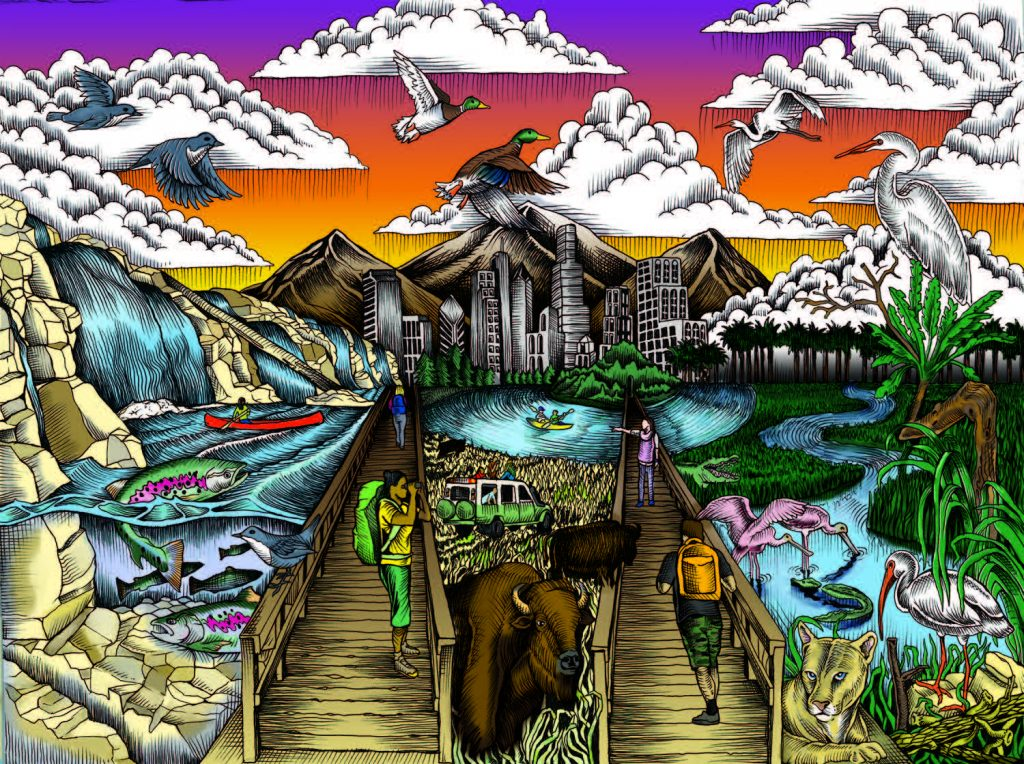 """Marlon Preuss illustration for Fish and Wildlife Service """"Find Your Way"""" coloring book"""