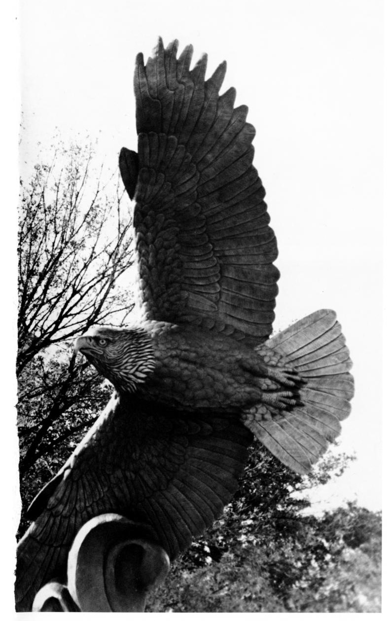 Black and white photograph of  an eagle statue with wing perpendicular to the ground, flying. It's lower wing is attached to a base off camera.